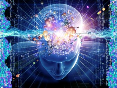 USTA Cognitive Neuroscience Lab